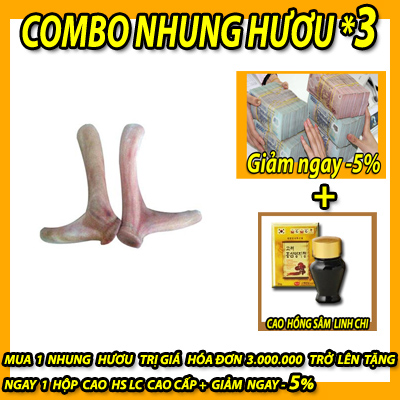 NHUNG-HUOU-TUOI