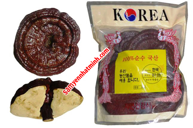 Thực Phẩm Chức Năng : Nấm Linh Chi đỏ Hàn Quốc