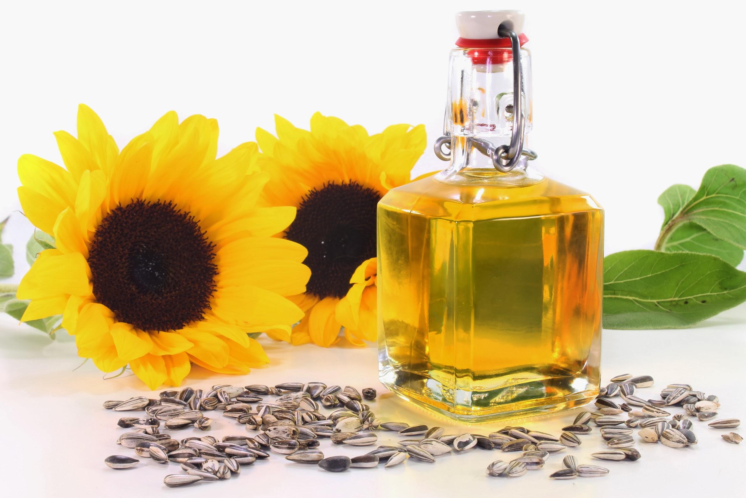 6 lợi ích không ngờ của dầu hướng dương đối với sức khỏe – Hifood.com.vn