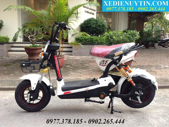 Giá xe đạp điện 133s