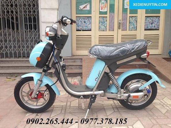 Giá xe đạp điện Ninja