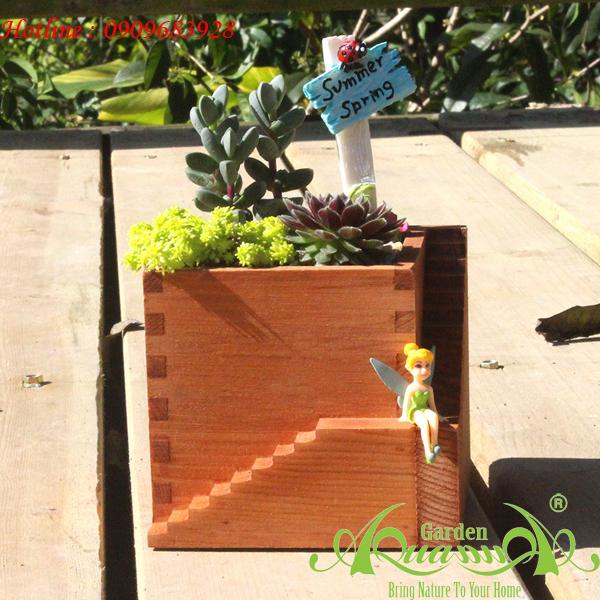 hop go terrarium aquagarden