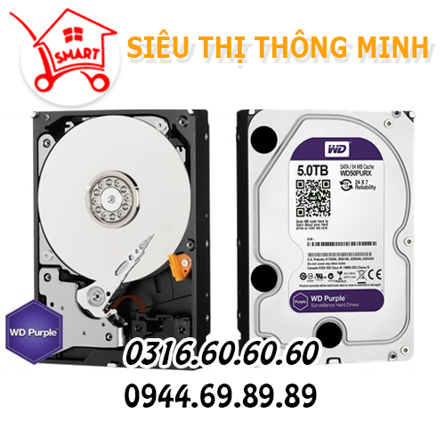Ổ cứng WD 5.0TB