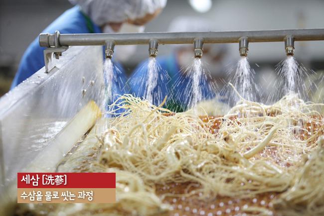 hồng-sâm-khô-hộp-thiếc-150g-daedong-hàn-quốc