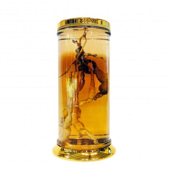 Bình ngâm rượu N1-73 Lít
