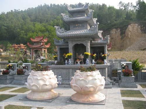 hoa sen được sử dụng để trang trí