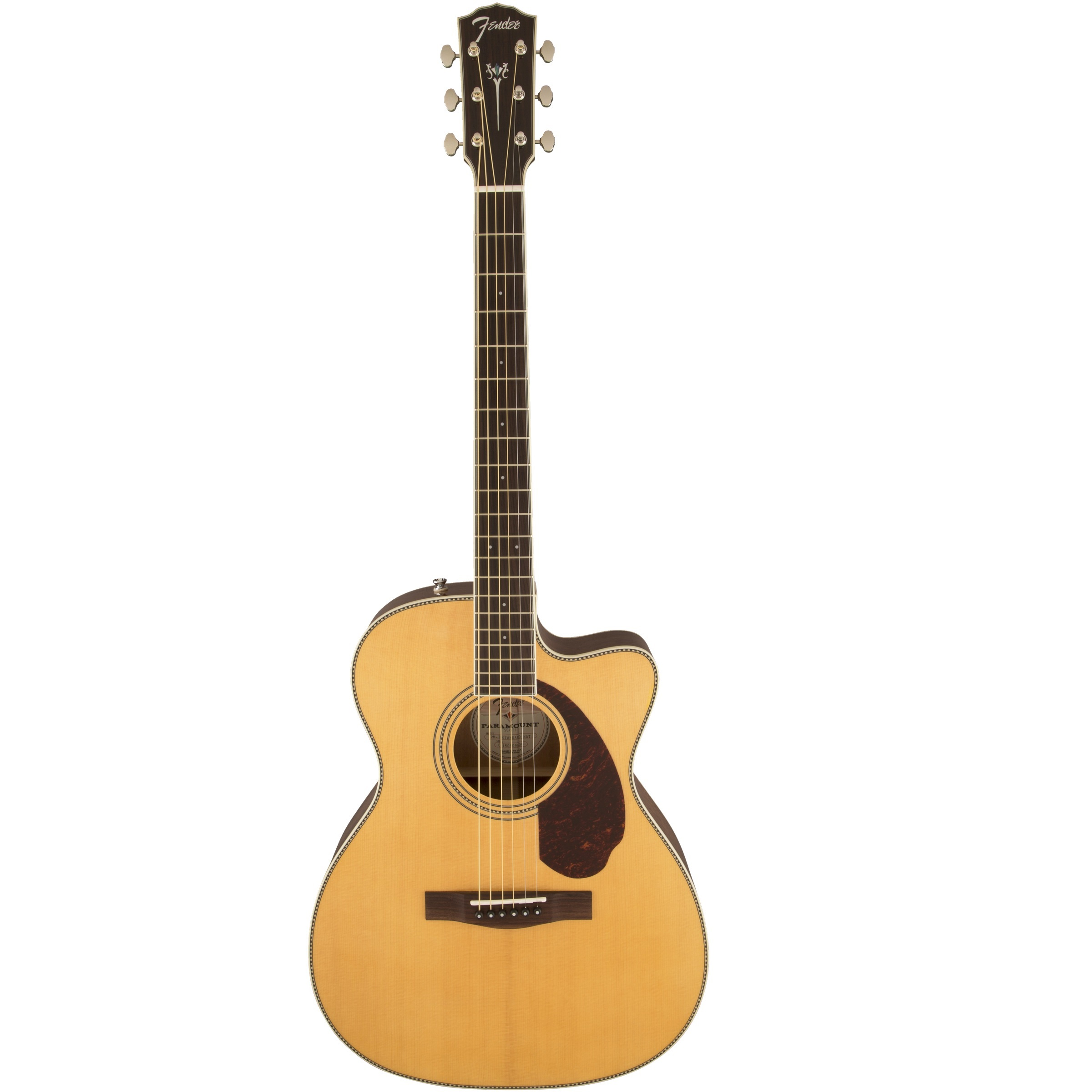 Review Đàn Guitar Acoustic Fender Paramount Series