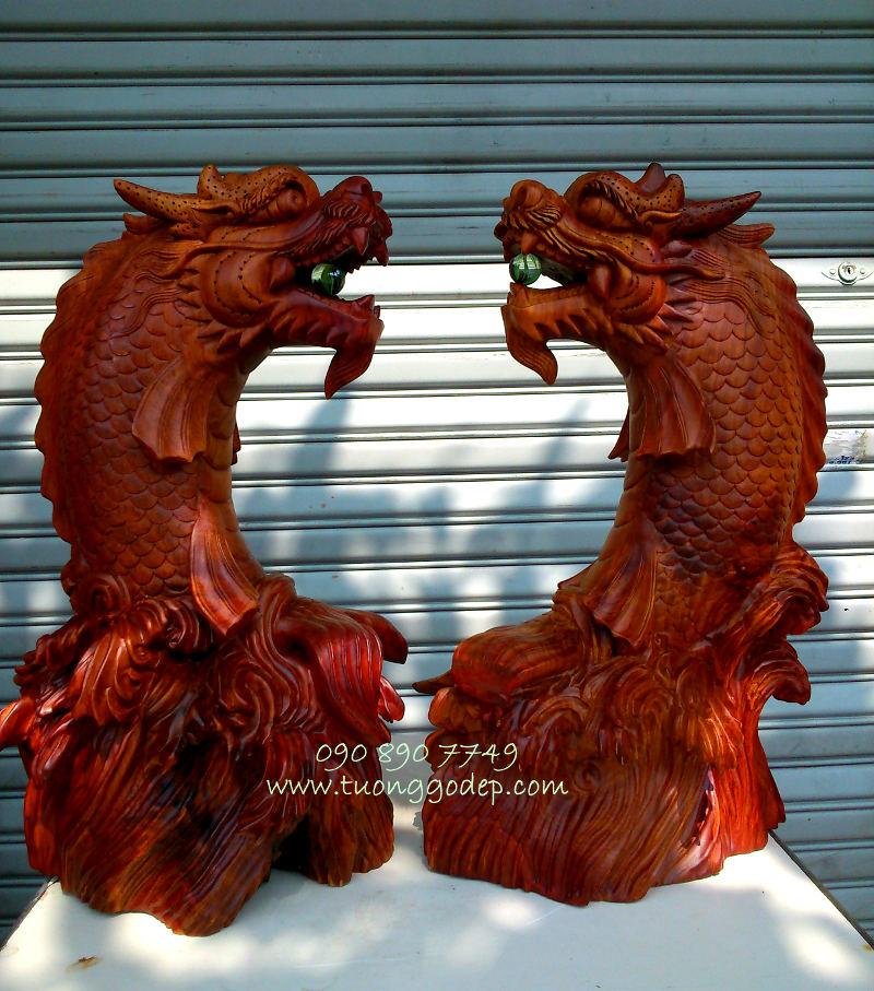 Cá chép hóa Rồng