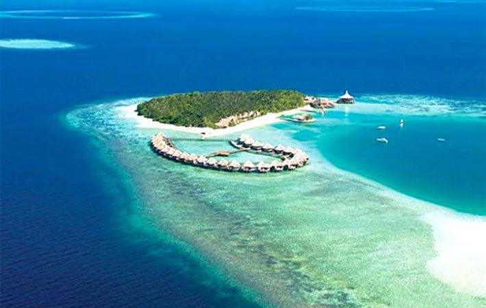 Kết quả hình ảnh cho Đảo San Hô (Coral Island)
