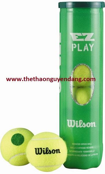 bong-tennis-wilson-ez-play