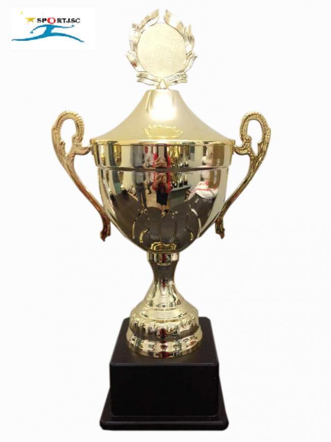 cup_luu_niem_8v0133b