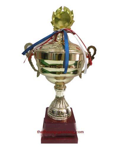 cup_luu_niem_the_thao_613b