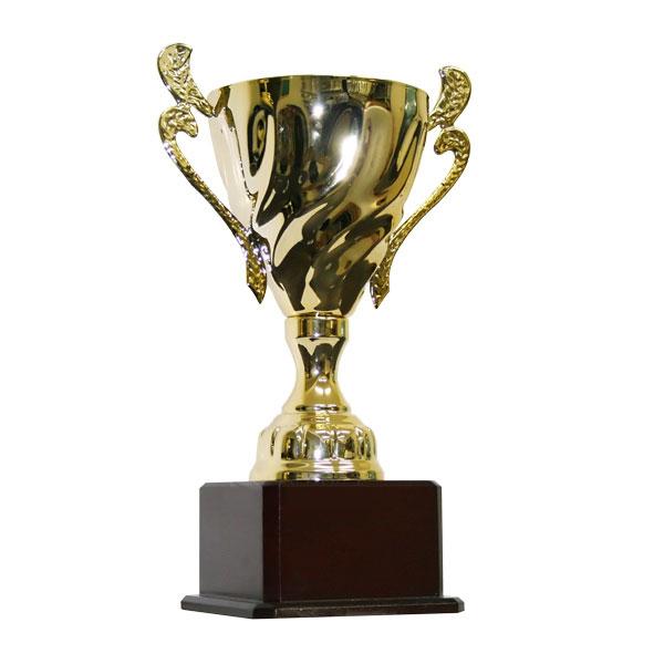 cup_vang_luu_niem_9v0013