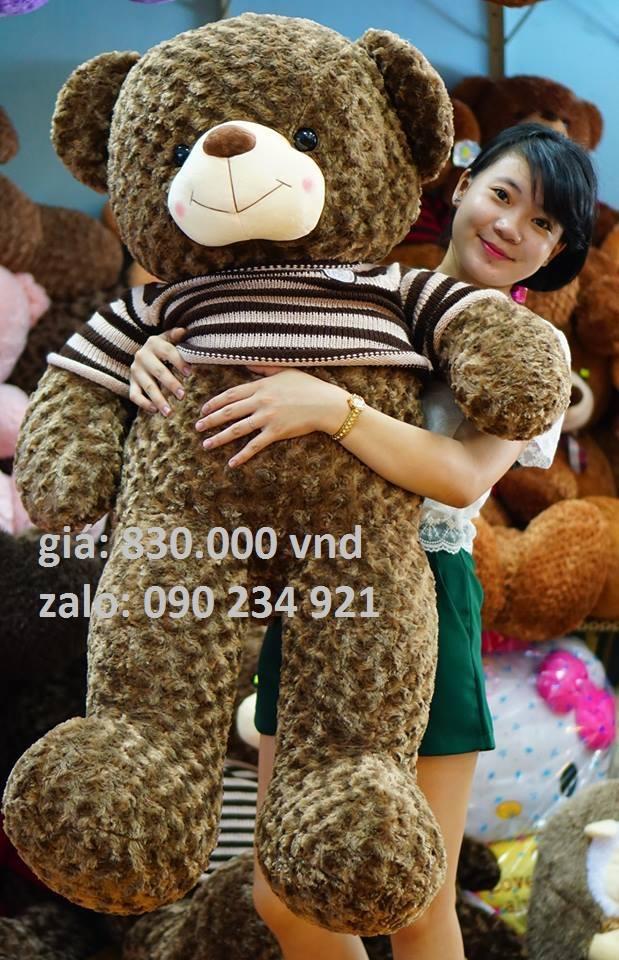 gấu bông teddy lông xoắn hoa hồng