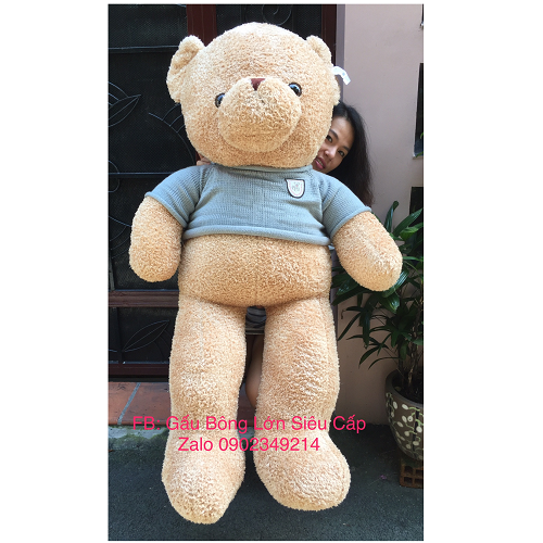 Gấu Teddy Heads and Tales