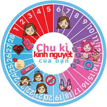 http://bizweb.dktcdn.net/100/085/337/files/coc-nguyet-san-chinh-hang-842.jpg?v=1487814350224