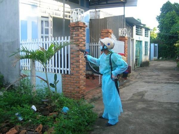 Dịch vụ phun thuốc diệt muỗi tại nhà chuyên nghiệp