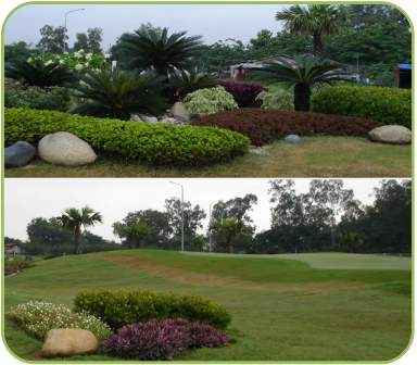 Green View Outside of Thu Duc Golf Course