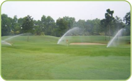 Wetland System for Golf Course