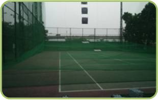 Net System for Golf course