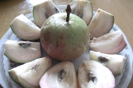 Star Apple (vu sua)