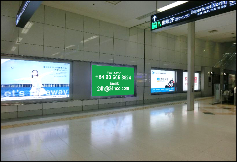 Light Box Advertising B1 Domestic Arrival