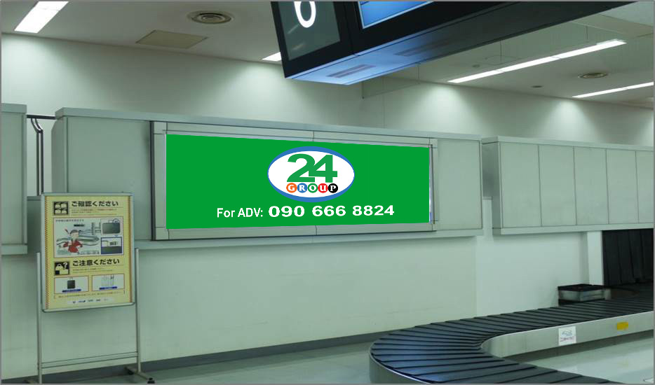 Lightbox Advertising Baggage Claim Domestic Arrival