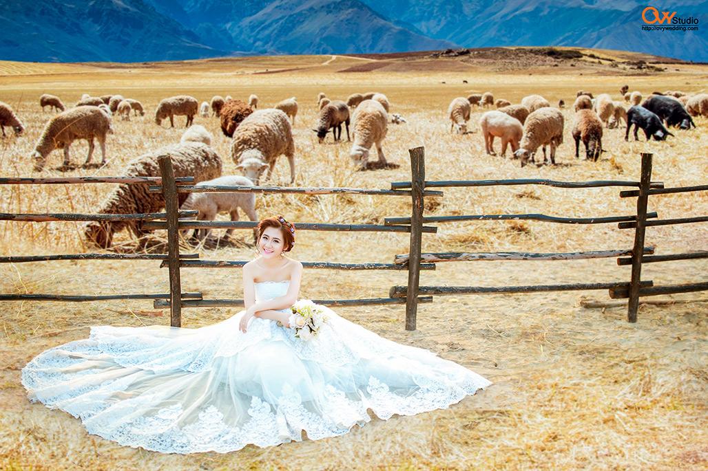 Dịp cuối năm đến đâu Hà Nội chụp ảnh cưới đẹp