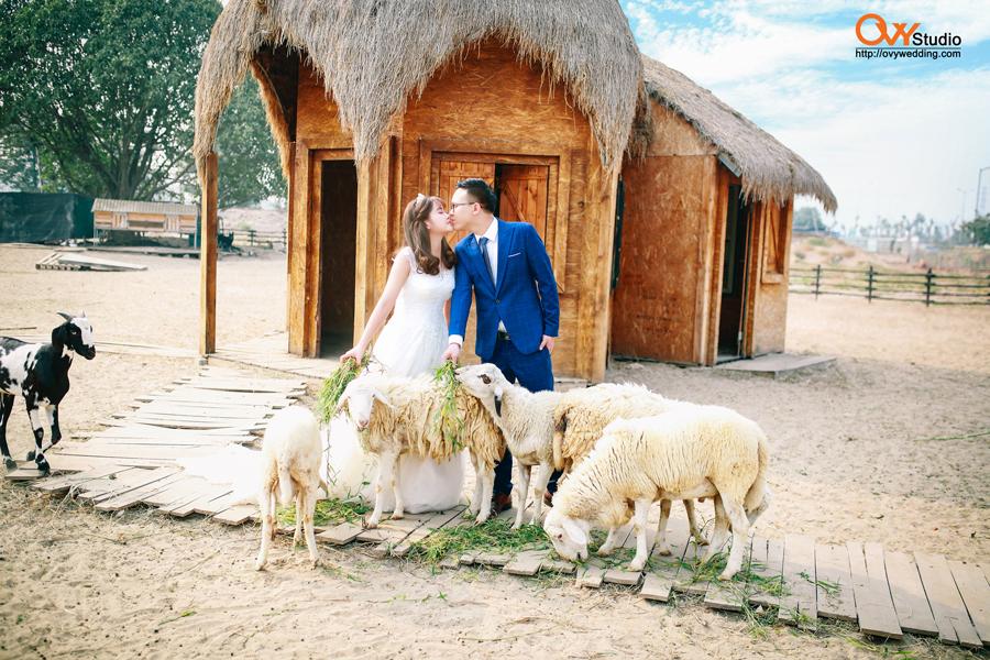 Nên chụp ảnh cưới ở đâu đẹp và phù hợp phong cách ?  
