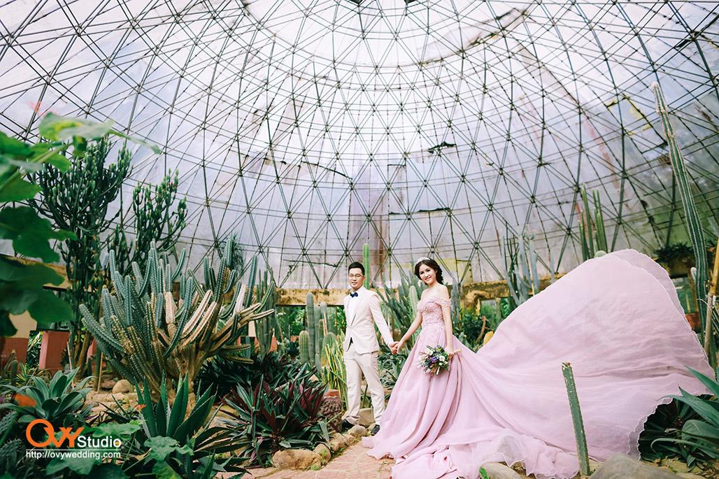 Chụp ảnh cưới đẹp ở Ba Vì 1
