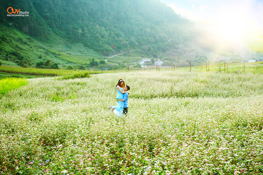 Chụp ảnh cưới ở Mộc Châu - Thiên nhiên hùng vĩ