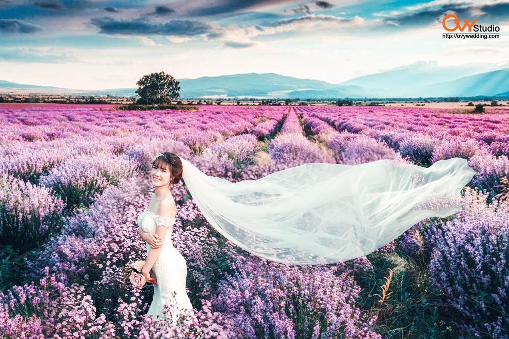 Top 5 địa điểm chụp ảnh cưới ở Hà Nội được ưa thích nhất