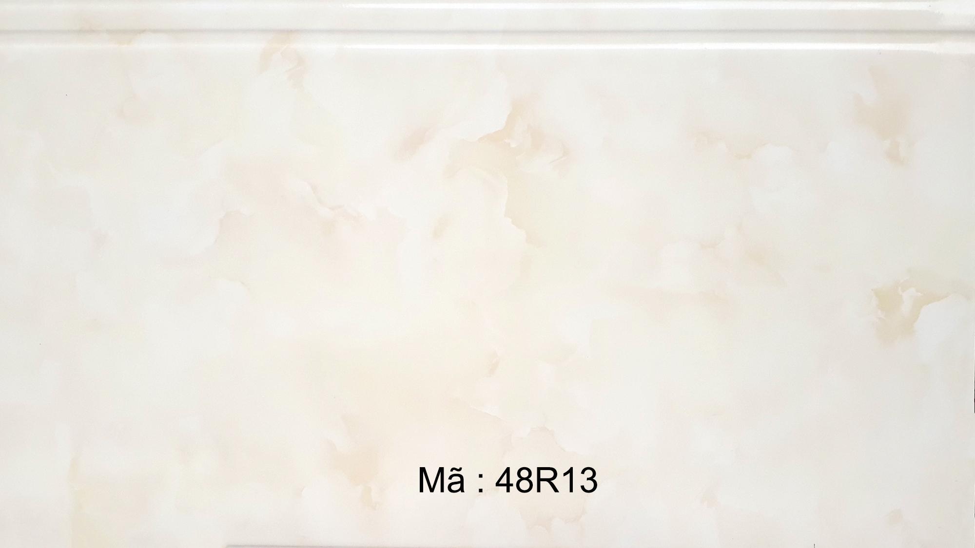 48R13