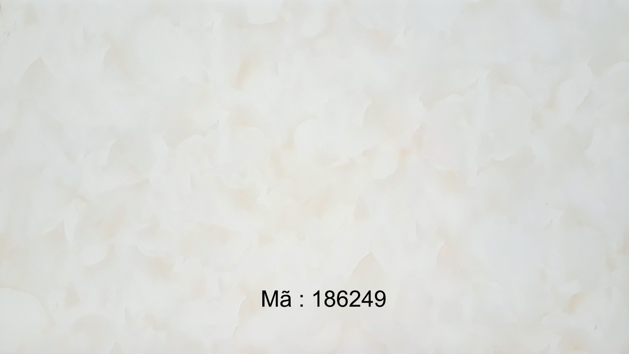 186249
