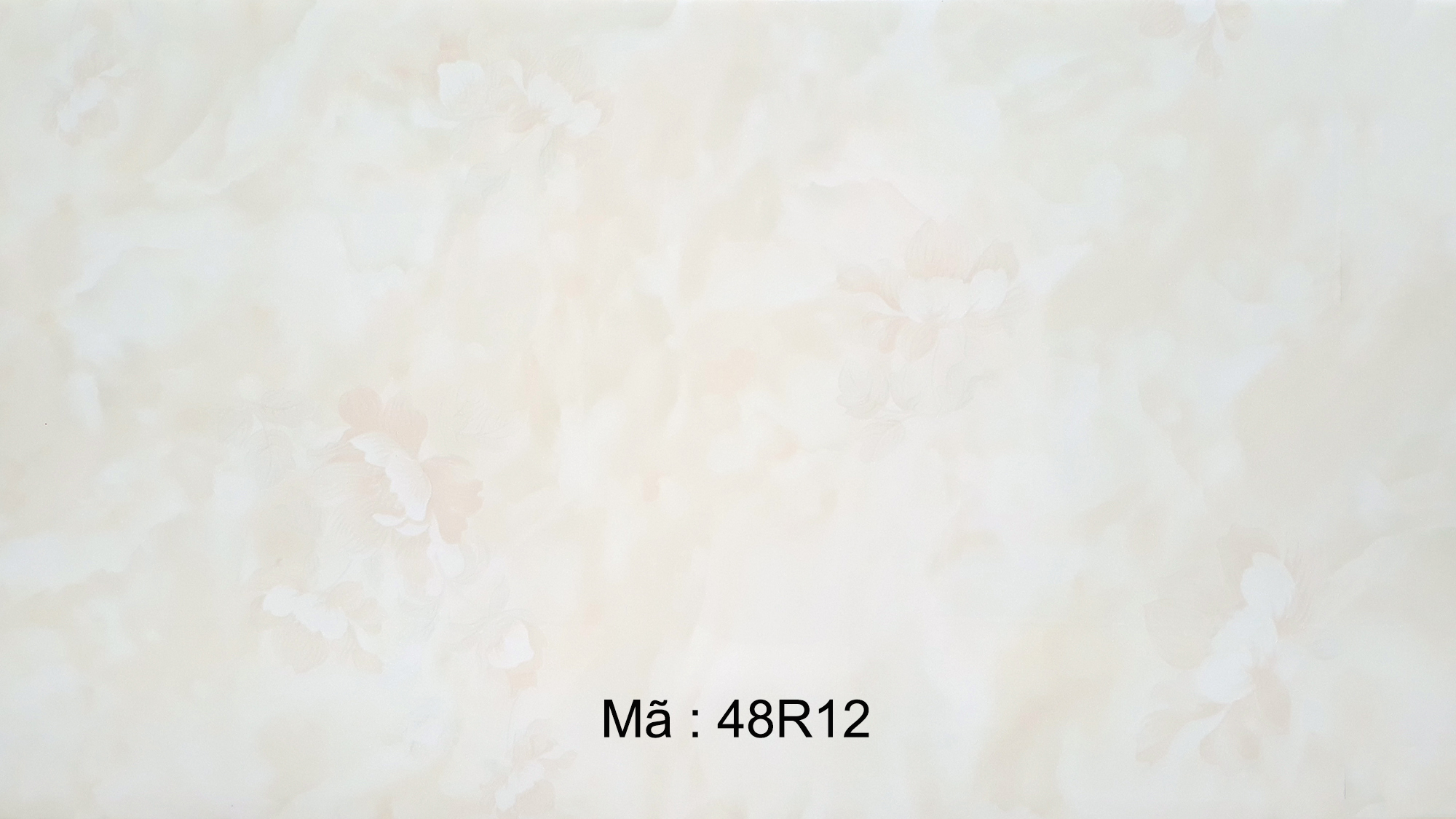 48R12
