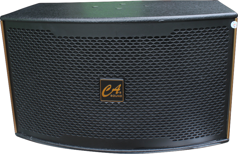 Loa K Series - K-310