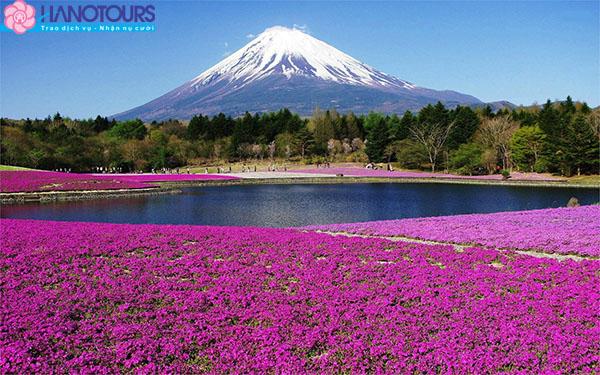 Đón Tết tại núi Phú Sĩ Nhật Bản