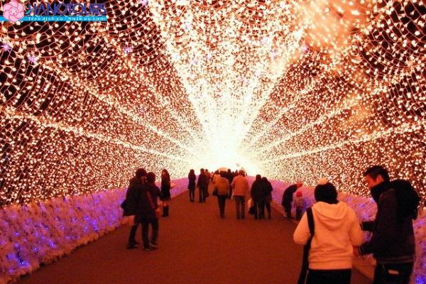 công viên hoa Nabana no Sato