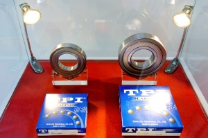 Ball Bearings TPI 01