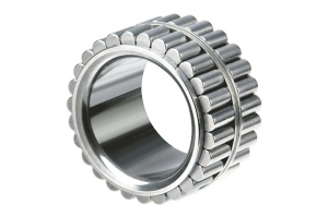 Double-row Cylindrical Roller Bearings TPI 61