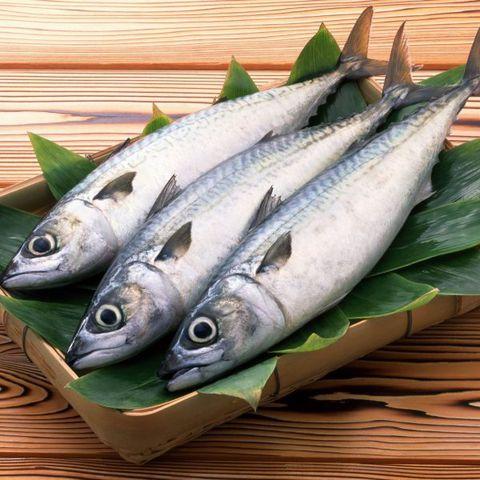 Diễn đàn rao vặt: Hải sản xuất khẩu tươi ngon - Điểm đến tin cậy Ca-thu-tuoi-ninh-thuan-600x600-6f0ff0a3-90e5-49d1-b633-0c657d8225d6