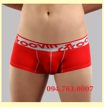 CUP BOXER ( CB0309 )