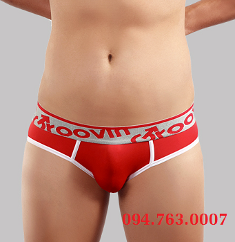 HIP BRIEF ( BF0309 )