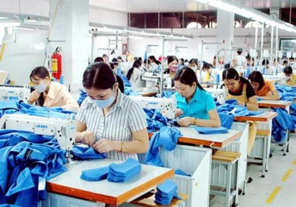 Garment Factory – 24group vn