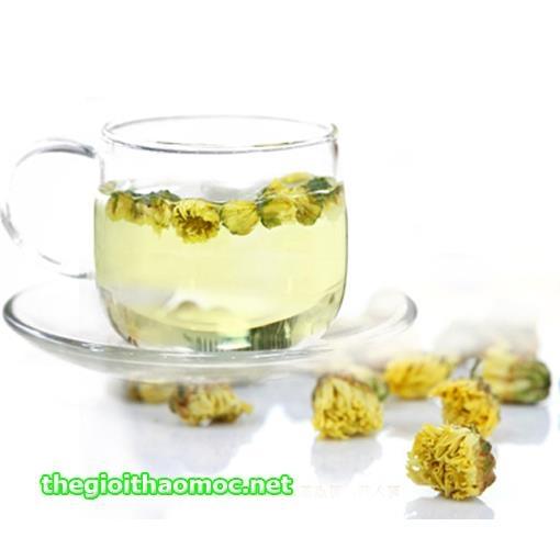 Kết quả hình ảnh cho trà hoa cúc nụ
