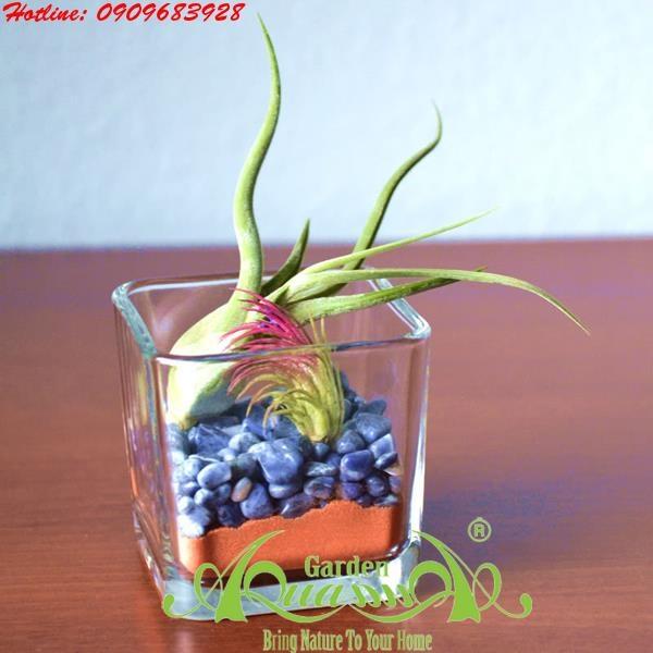 B Kh Ng Kh Aquagarden 94