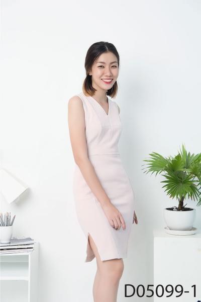 Đầm D05099-1