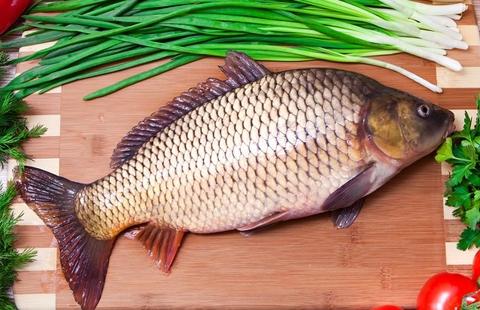 Cá chép giàu dinh dưỡng, trị bệnh tốt