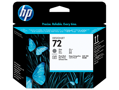 HP 72 Gray and Photo Black Printhead (C9380A)