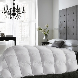 Chăn lông vũ 18.5oz White Duck Down Feather Twin Duvet